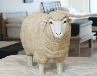 Healthy Choice Organic Mattress Sheep