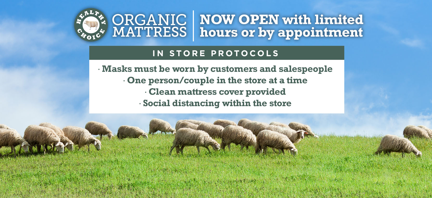 Chemical Free Mattresses for the whole family